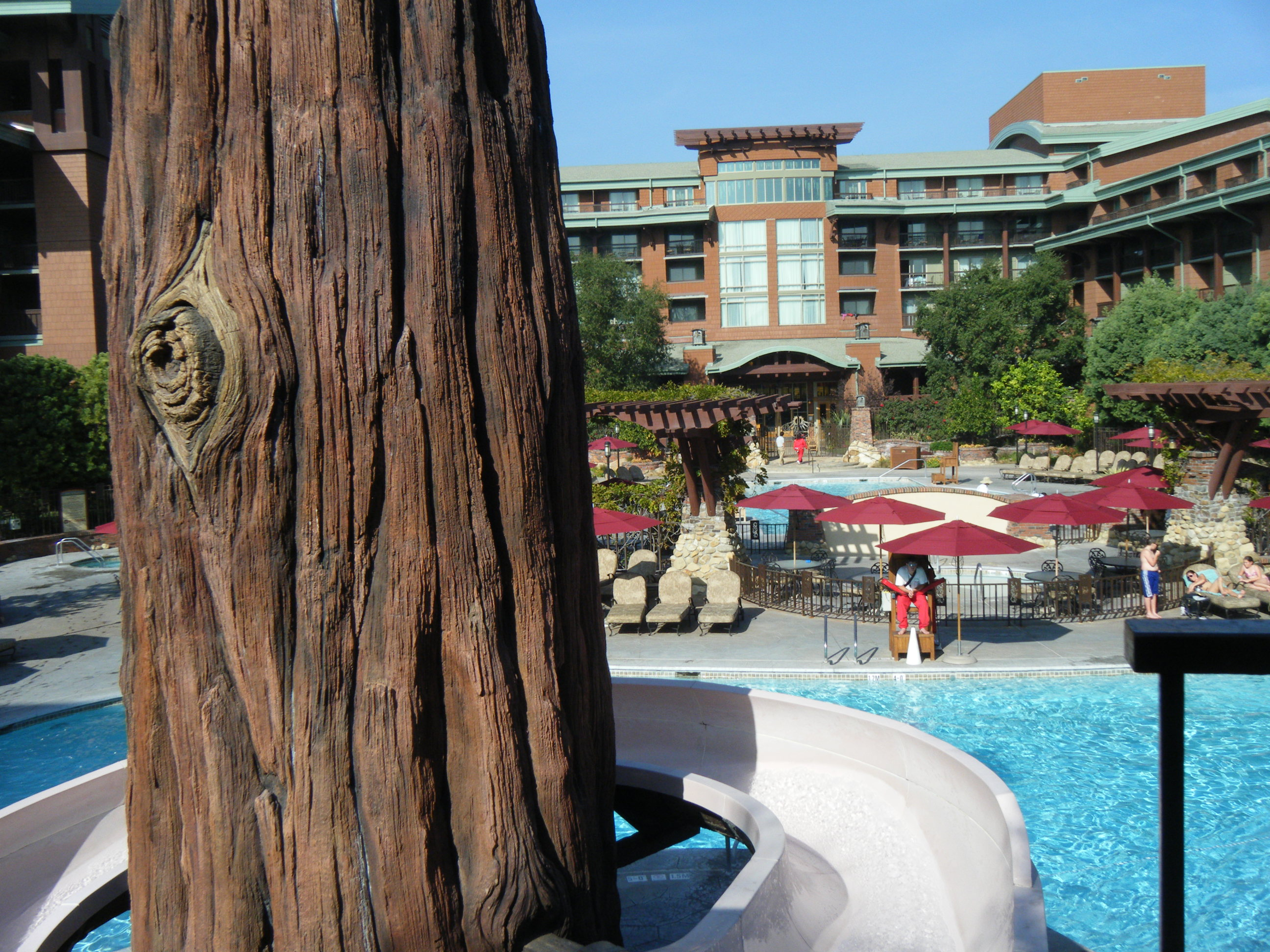 View from the Top of the Grand Californian Slide