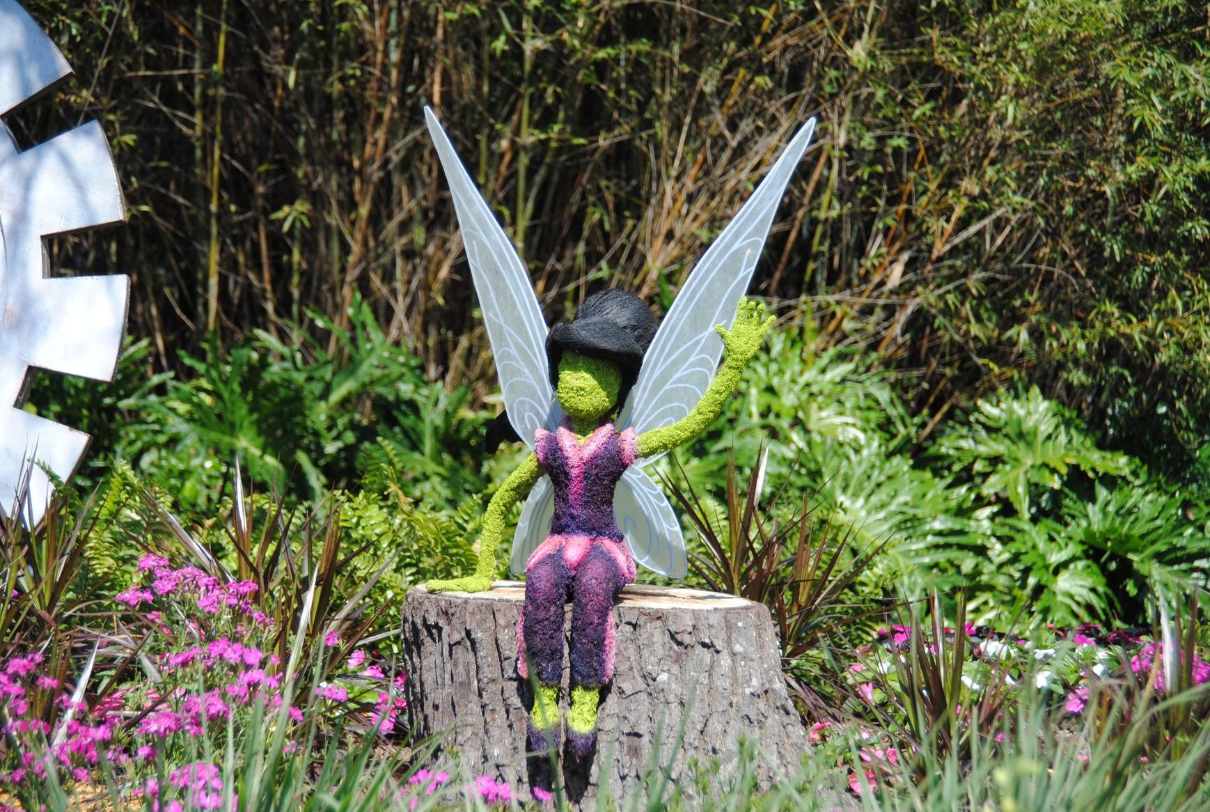 Vidia the fast flyer Fairy