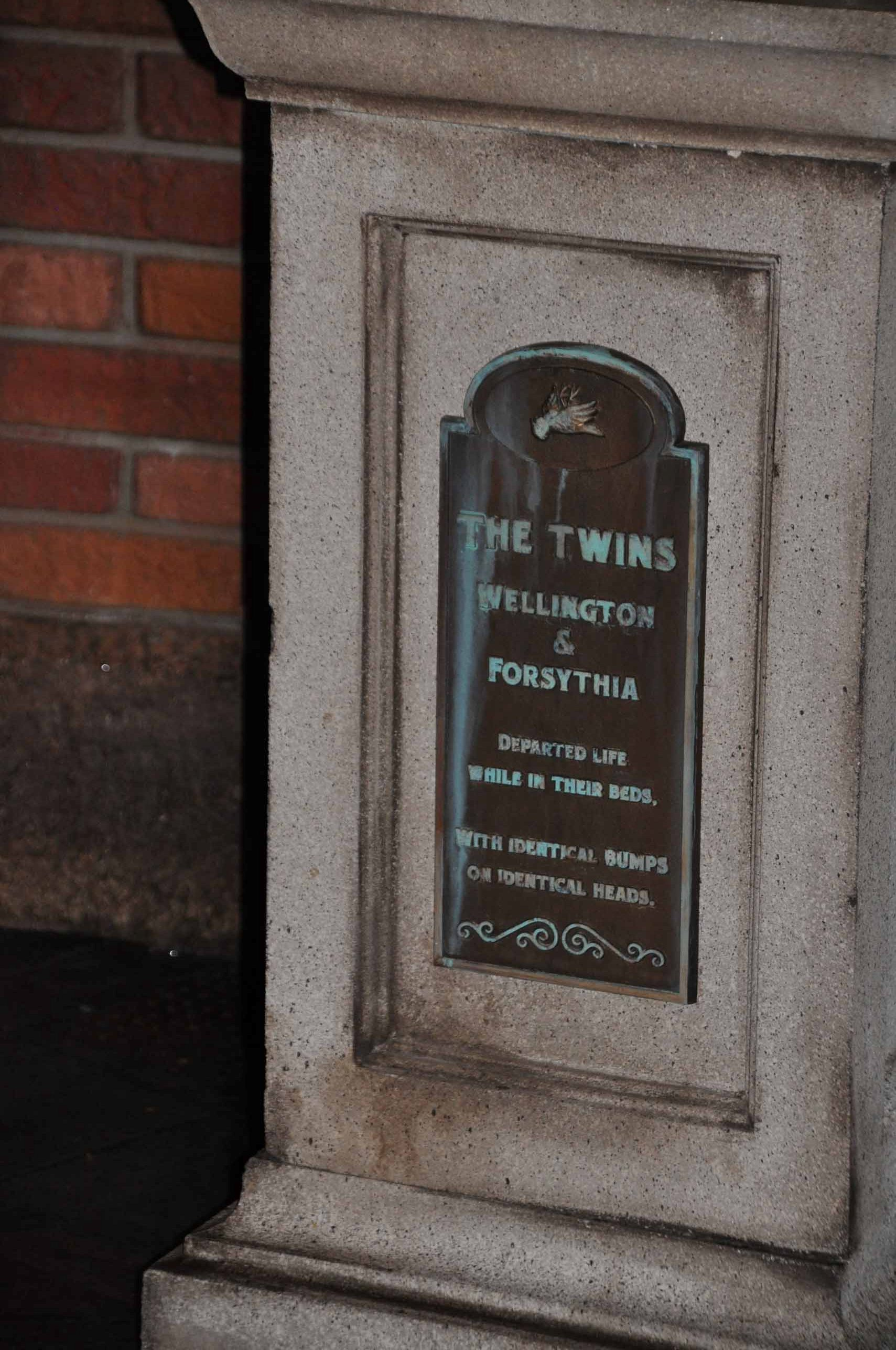 Haunted Mantion Queue - The Twins 2