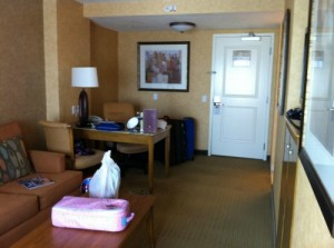 Double Tree Suites by Hilton Living Area (Disneyland)