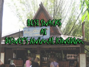 Best Snacks at Disney's Animal Kingdom