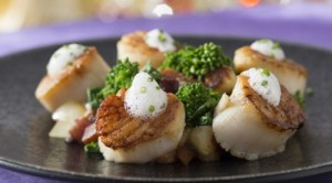 ©Disney diver sea scallops (have I mentioned what a sucker I am for scallops?)