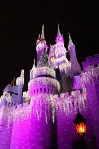Magic Kingdom Castle aglow in Christmas lights