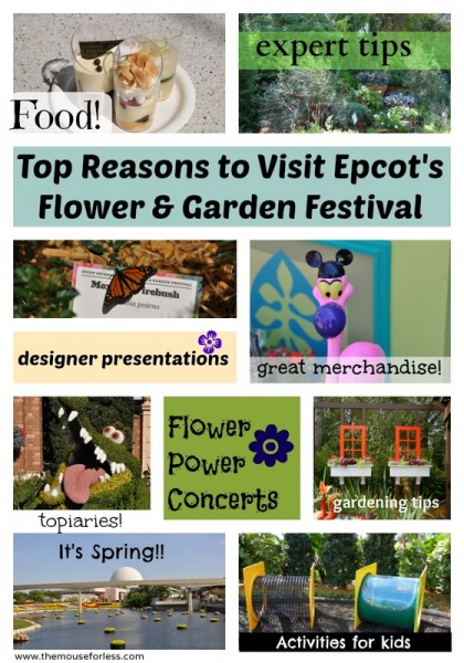 Top Ten Reasons to Visit Flower & Garden Festival