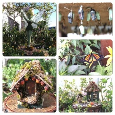 Tinker Bell's Butterfly Garden
