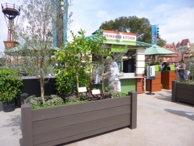 Flower and Garden Outdoor Kitchens (2)
