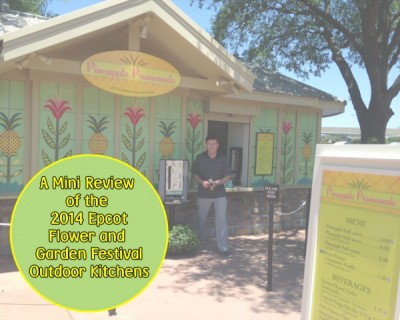 A Mini Review of the 2014 Epcot Flower and Garden Festival Outdoor Kitchens