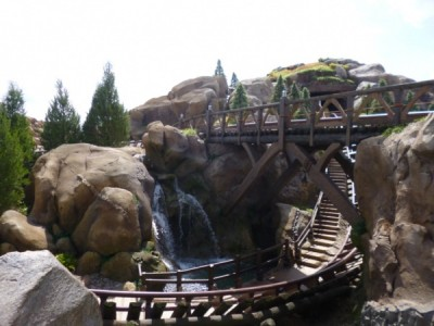 Seven Dwarfs Mine Train (14)