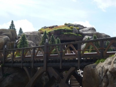 Seven Dwarfs Mine Train (15)