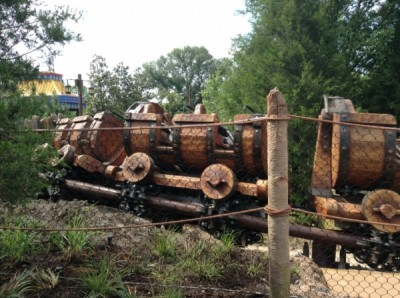 Seven Dwarfs Mine Train (3)