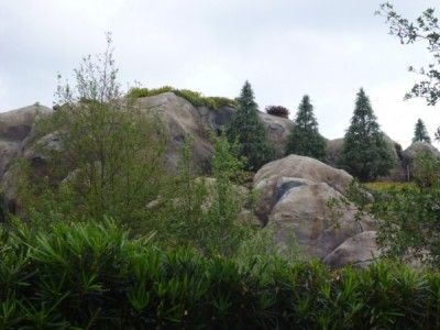 Seven Dwarfs Mine Train (5)