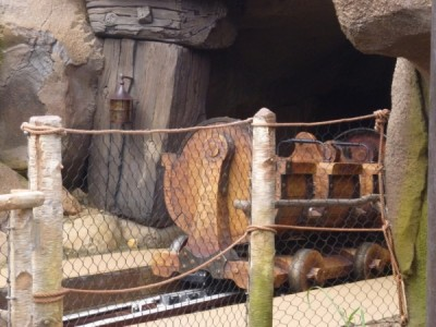 Seven Dwarfs Mine Train (9)