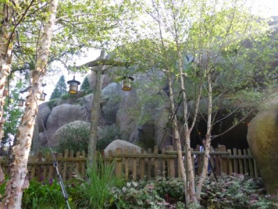 Seven Dwarfs Mine Train queue (21)