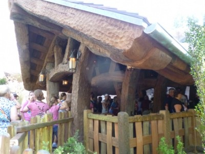 Seven Dwarfs Mine Train queue (24)