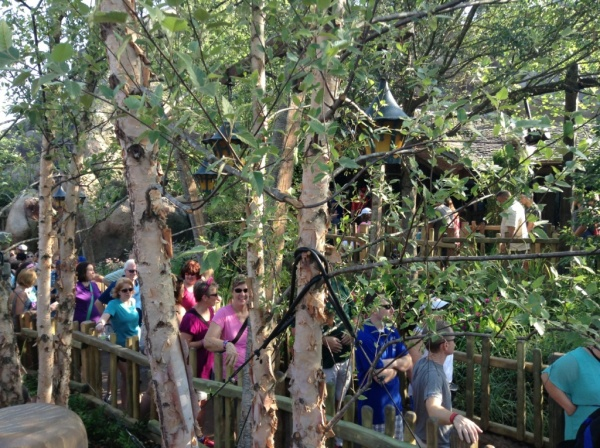 Seven Dwarfs Mine Train queue (4)