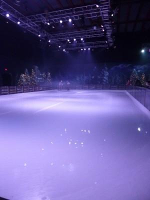 Frozen Summer Fun Live Hollywood Studios Frozen Funland (8)