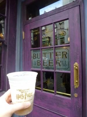 universal studios wizarding world of harry potter diagon alley (32)