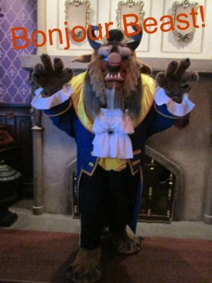Beauty and the Beast Pinterest USE