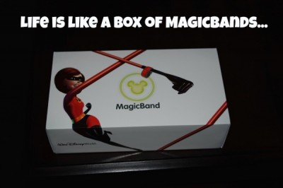 Life is like a box of MagicBands...
