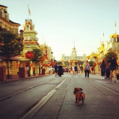 One last walk down Main Street U.S.A.