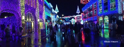 Osborne Family Spectacle of Dancing Lights3