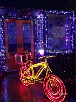 Osborne Family Spectacle of Dancing Lights6