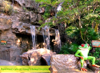 Rainforest Cafe waterfall