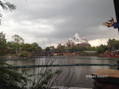 View from Flame Tree Barbecue
