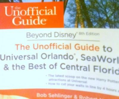 Beyond Disney book cover 2