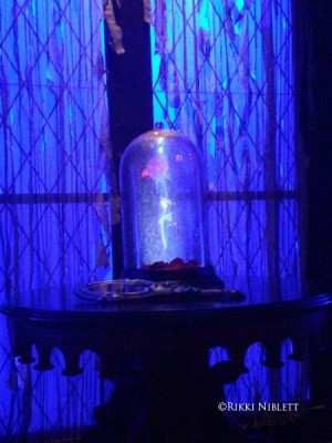 Enchanted Rose at Be Our Guest Restaurant