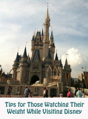 Tips for Those Watching Your Weight Visiting Disney 2