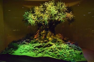 One Man's Dream  - Tree of Life