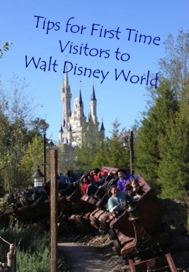 Tips for First Time Visitors to Walt Disney World
