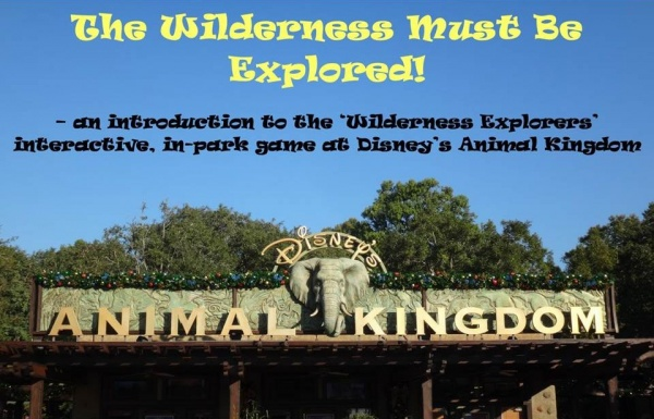 Wilderness Exp (1)