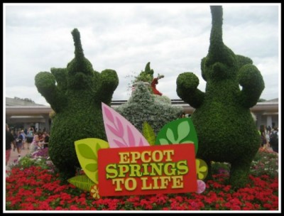 epcot springs
