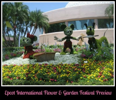 flower and garden preview