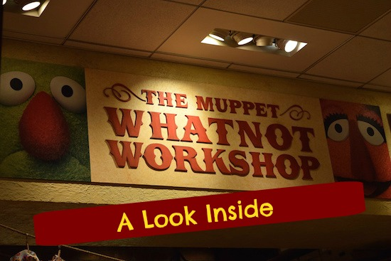 tim muppet whatnot 0212 cover