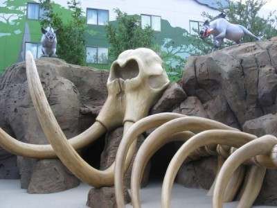Art of Animation Resort (22)