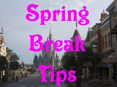 MFL Spring Break Main
