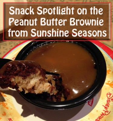 Snack Spotlight on the Peanut Butter Brownie from Sunshine Seasons at Epcot