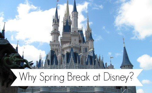Why spend your spring break at Disney | The Mouse For Less
