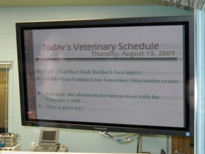 Conservation Station Vet Schedule