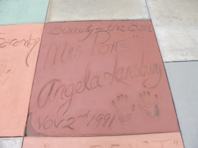 Disneys Hollywood Studios (25)