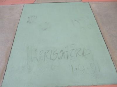 Disneys Hollywood Studios (27)