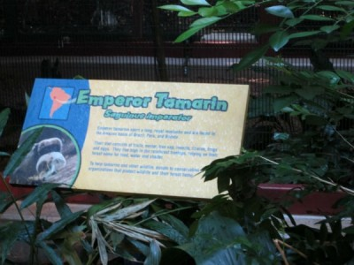 Wildlife Express Exhibit