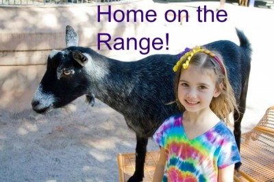 Home on the Range Pinterest