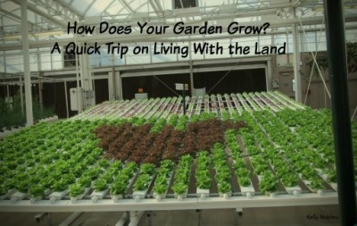 How Does Your Garen Grow? Living with the Land