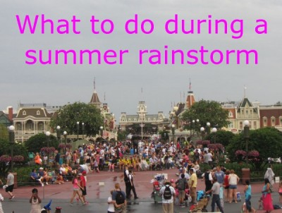 MFL Summer Rain Main