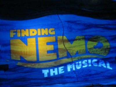 MFL Summer Rain Nemo