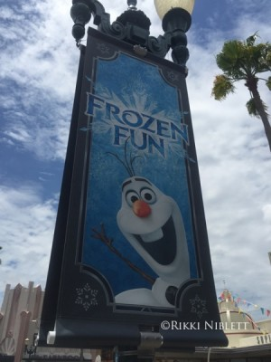 Frozen Summer Fun Banner